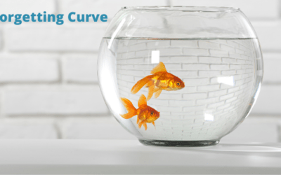 Combatting the Forgetting Curve